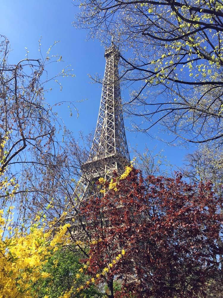 Eiffelturm-im-Fruehling_ba